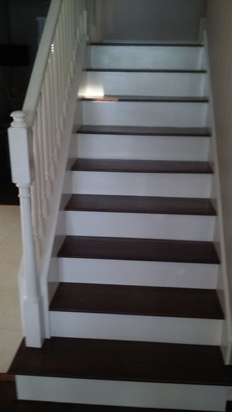 Interior Steps Painting in Lutz, FL (1)