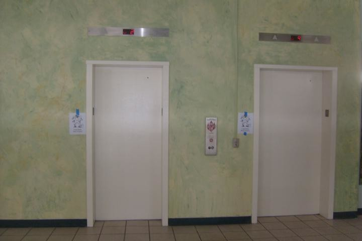 Commercial Venetian Plaster Senior Home Facility elevators in downtown Tampa